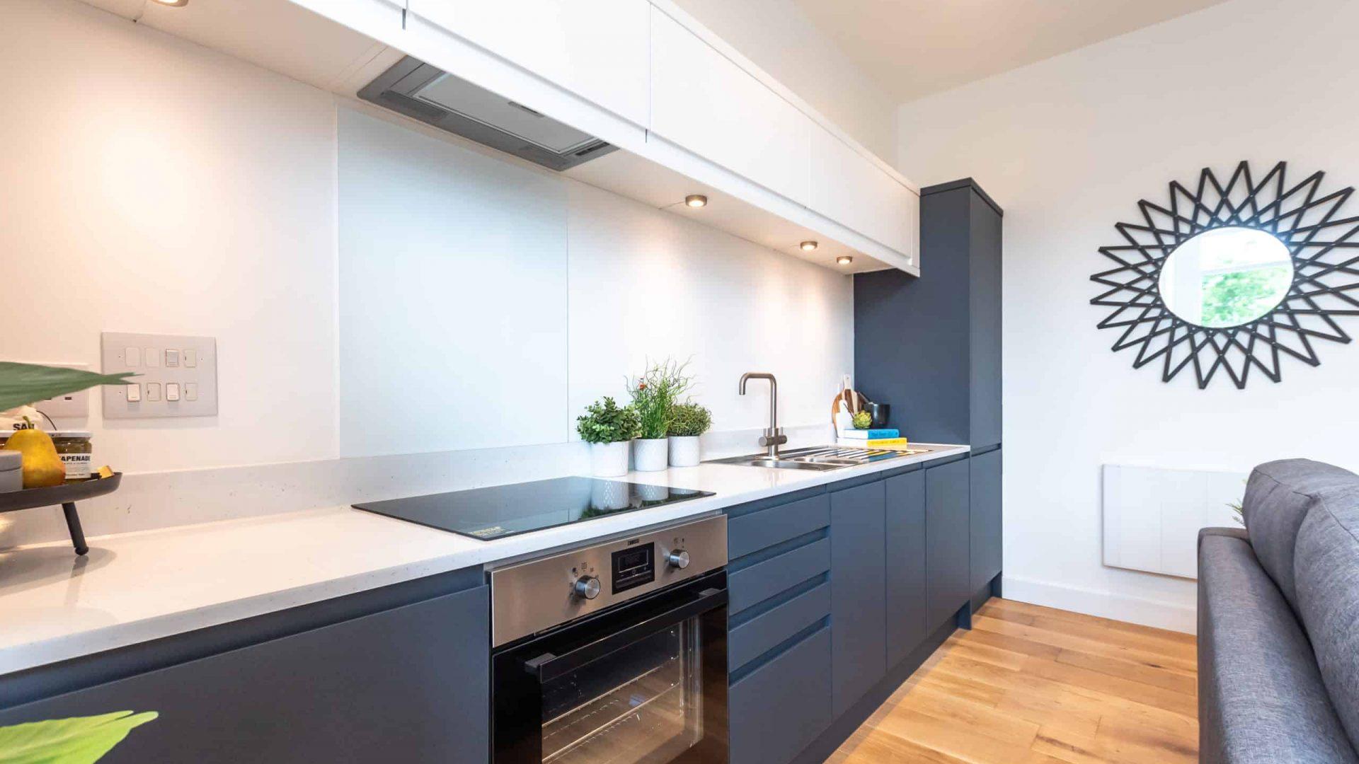 Southern House Property: Kitchen